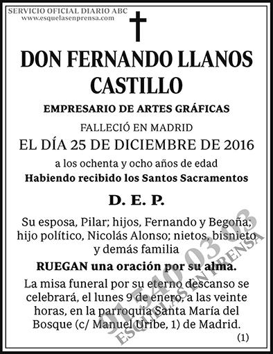 Fernando Llanos Castillo